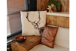 DeerCo - A New Look About Startup In Product Manufacture Field